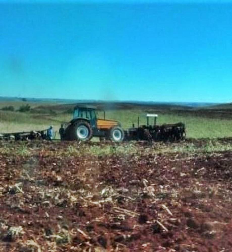 Empresa destrói lavoura do MST destinada a doação de alimentos na pandemia