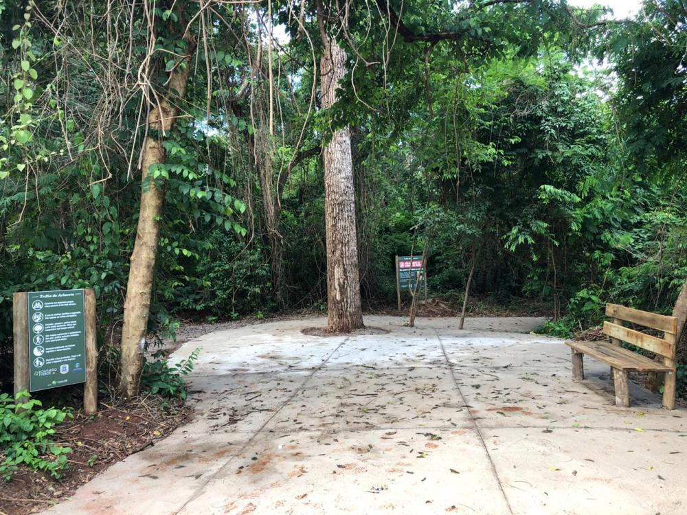 Parque Cinturão Verde celebra 21 anos com abertura oficial da Trilha do  Arboreto